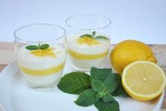 Panna-cotta-panakota-citrinu-skonio-2